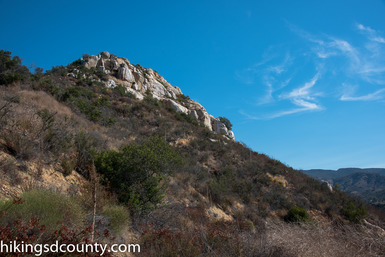 Rattlesnake Mountain Trails Dog Friendly
